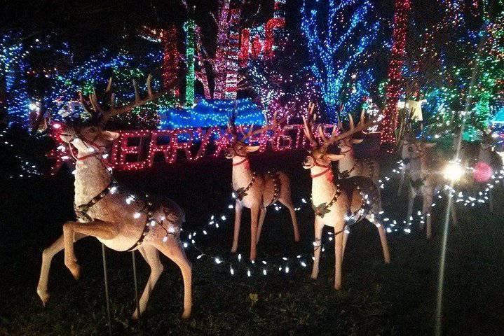 Vancouver Christmas light tour@ Globalduniya
