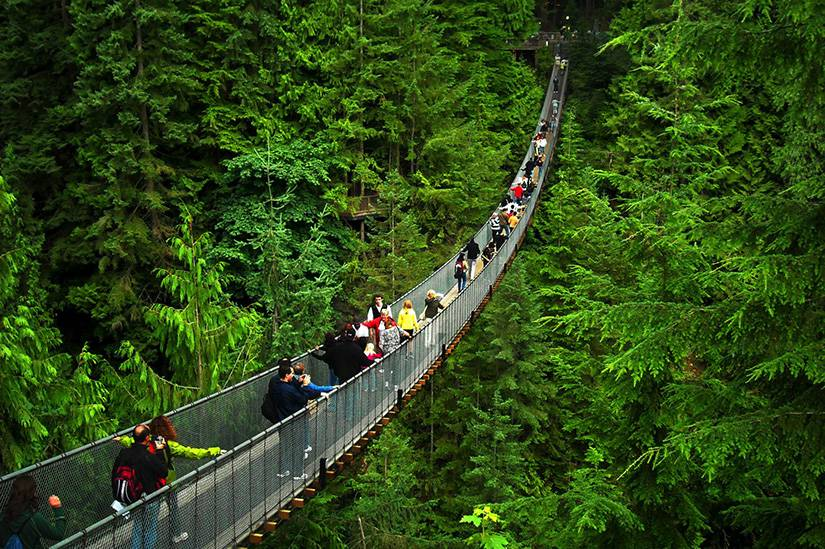 Private Vancouver Day Trip | Grouse Mountain & Capilano Suspension Bridge Globalduniya
